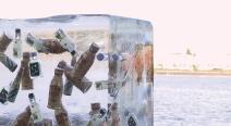 Eingefrorenes im Eisblock_23
