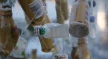 Eingefrorenes im Eisblock_3