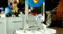 Eingefrorenes im Eisblock_44