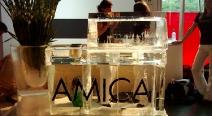 AMICA_3