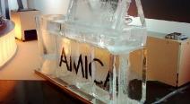 AMICA_4
