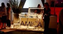 AMICA_8