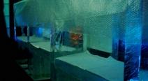 Eisbar im Hotel Schweizerhof