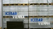 Eisbar Vienna_6