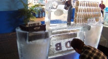 ICEBlockerS Eisbar_17