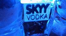 SKYY - Eisbar im SAGE_1