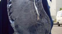 Eisskulptur - Eisschwan_22