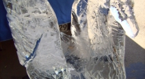 Eisskulptur - Eisschwan_24