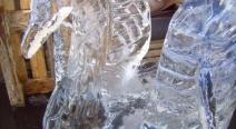 Eisskulptur - Eisschwan_27