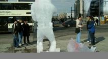 Robbenjagdprotest des IFAW_10