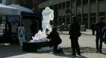 Robbenjagdprotest des IFAW_19