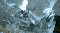 Rentier Eisskulptur_11