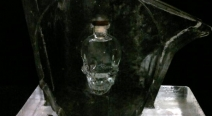 Wodkarutsche - Crystal Head Vodka
